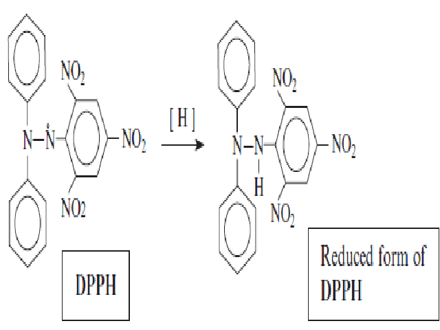 Reduction of 1,1, Diphenyl -2-Picryl hydrazyl – (DPPH) free radical