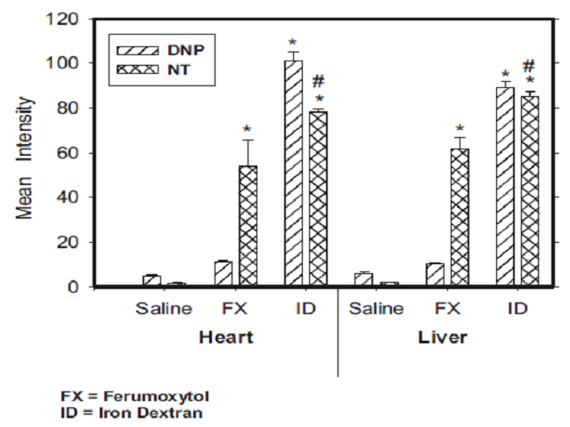 Relative densities of DNP and NT of the heart and liver in animals treated with ferumoxytol and iron dextran. Each bar is the mean  SEM of 6 individual rats. * ¼ Significantly different from control (p < 0.05); # ¼ Mean intensity times 10.