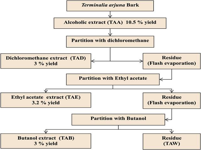 Sequential extraction of Terminalia arjuna bark.