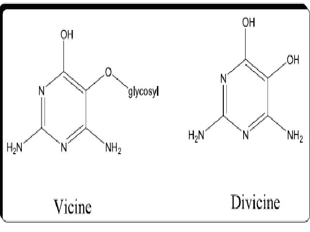 Structural formulas of vicine and divicine in V. faba