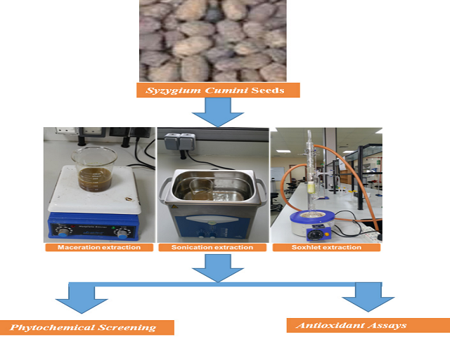 The Effect of Different Extraction Methods on Antioxidant Capacity and Phytochemical Screening of Syzygium cumini Seeds