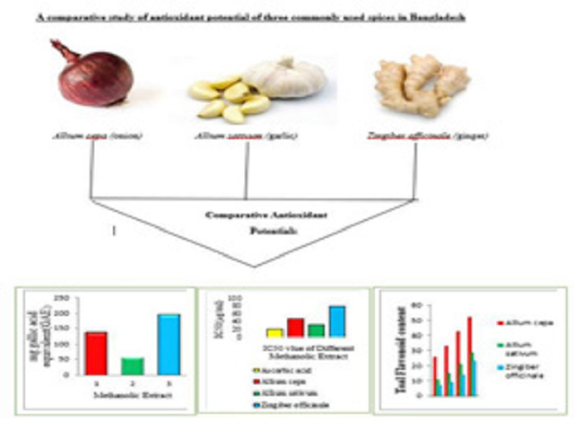 A Comparative Study of Antioxidant Potential of Three Commonly Used Spices in Bangladesh